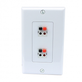 2 port Dual Speaker Module wall plate