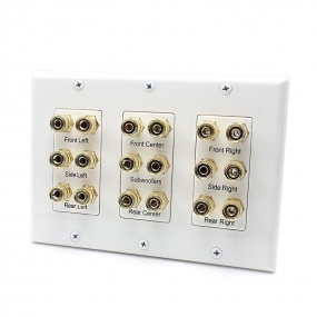 Two Subwoofer Compatible 16 Banana Post and 2 RCA Speaker Wall Plate for Home Theater Audio